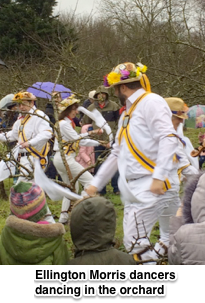 Wassail Jan 2017, Morris dancers